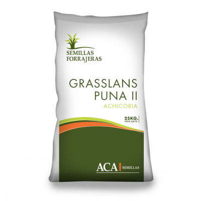 Grasslands Puna II