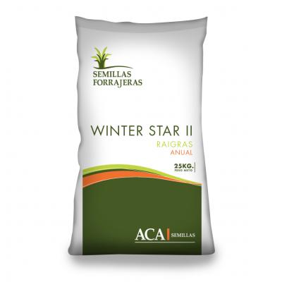 Winter Star II