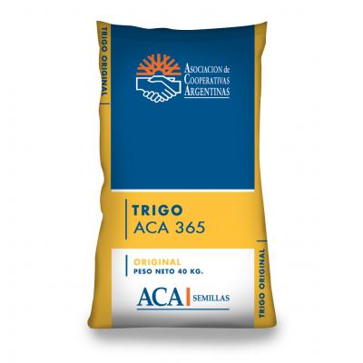 ACA 365