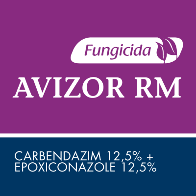 Avizor RM