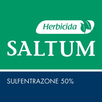 Saltum