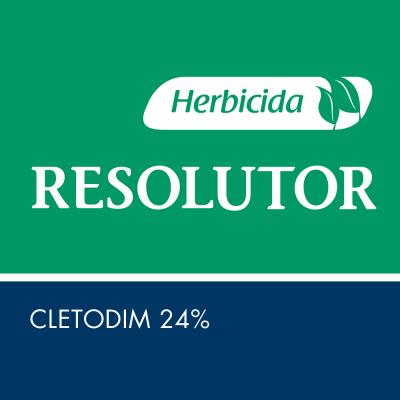 Resolutor