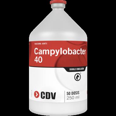 Campylobacter 40
