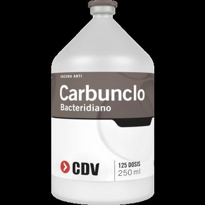 Carbunclo Bacteridiano