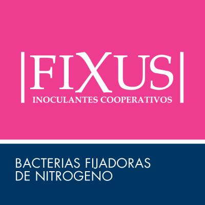 Fixus ACA